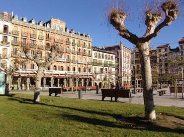Etapa Pamplona - Iruña a Puente la Reina - Gares. Asociación Amigos del Camino de Santiago de Estella