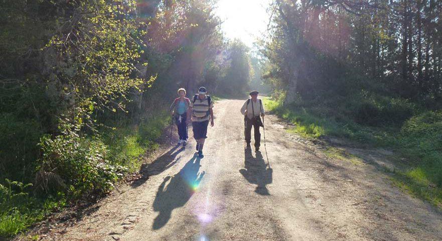 Experiencias vividas en los caminos a Santiago