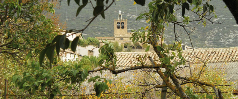 Etapa Liédena - Abínzano. Asociación Amigos del Camino de Santiago de Estella